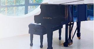 Перевозка пианино и роялей в Самаре цена от 402 руб.